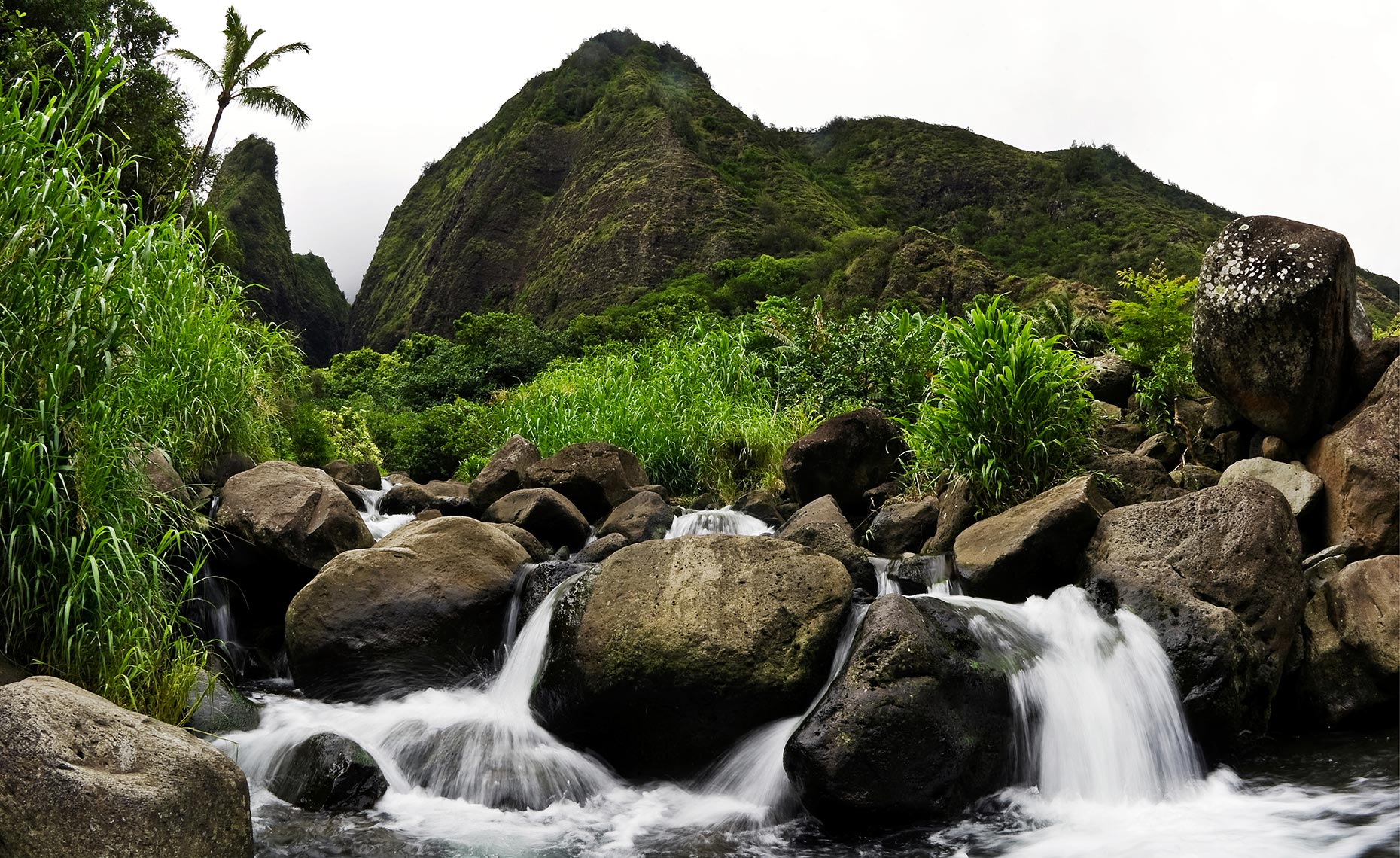 42_Iao_Valley_Stae_Park_Maui_Hawaii_Environment_Landscape_Chris_Wellhausen_Photography.JPG