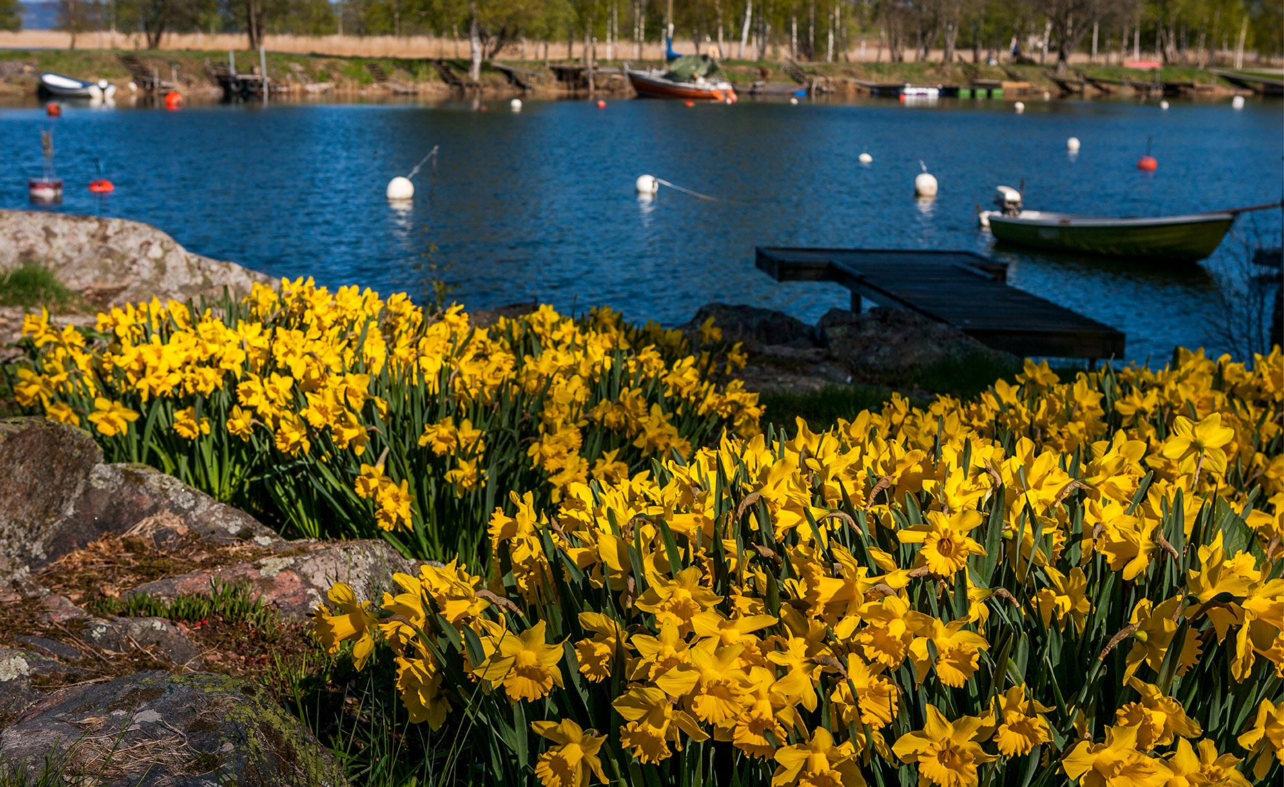 46_Gothenburg_Goteburg_Vanersborg_Lake_Vaner_Sweden_Downtown_Environment_Landscape_Chris_Wellhausen_Photography.JPG