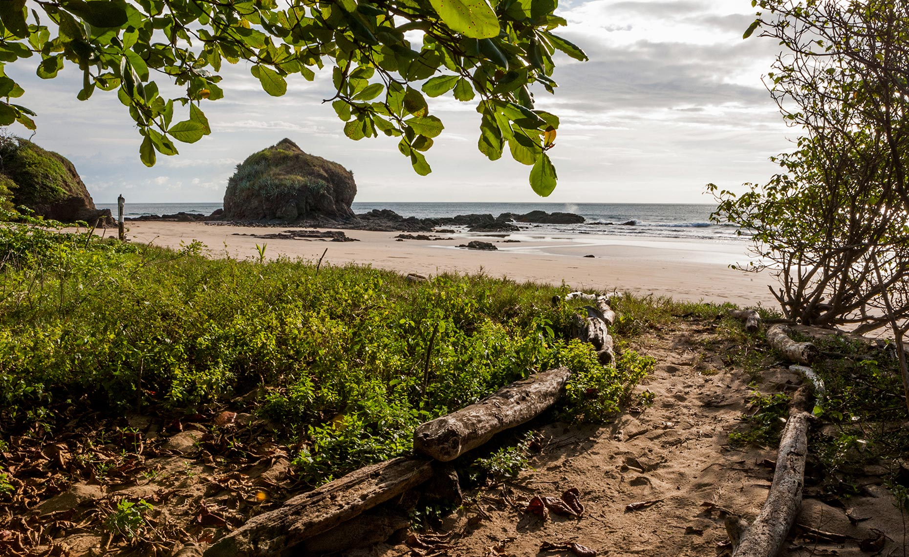 60_Playa_Grande_Costa_Rica_Environment_Landscape_Chris_Wellhausen_Photography.JPG